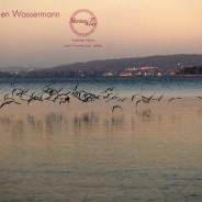 Wassermann – gesunde Autonomie (gesundes Ich) durch Bindung entwickeln (21.Jan – 18.Feb)