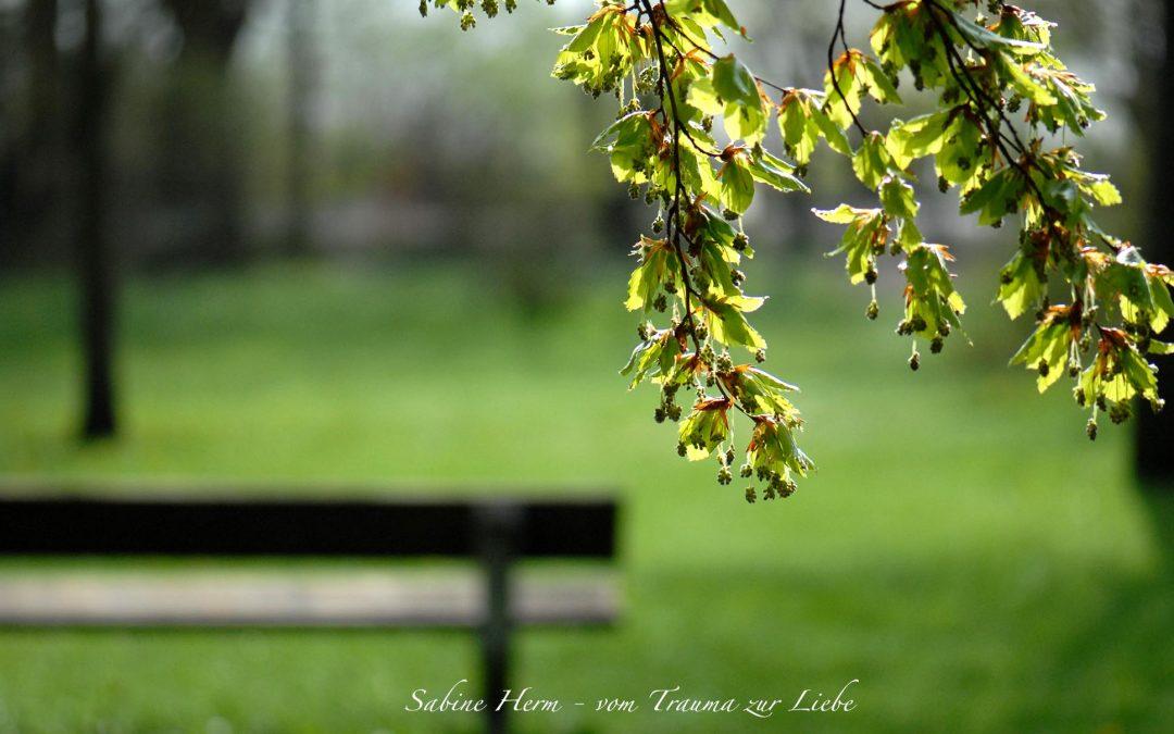 Kraft, Erfolg und verlässliche Beziehungen  Aktuell: Steinbock – Prinzip ist aktiviert