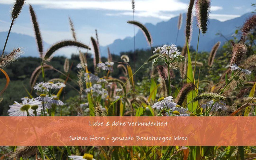 Neumond Skorpion 28.10. – Liebe und die Kraft deiner Verbundenheit